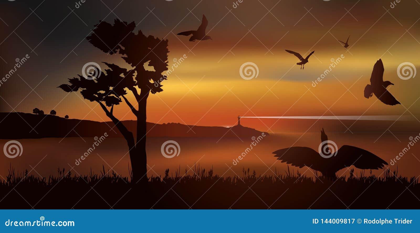 Punkt av sikten på en fjärd en solnedgång med ett flyg av seagulls