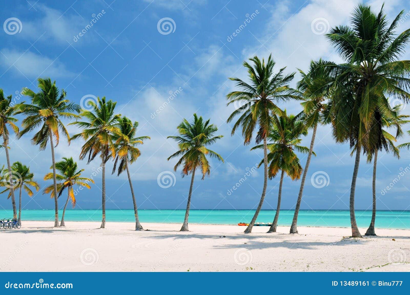 Punta cana пляжа