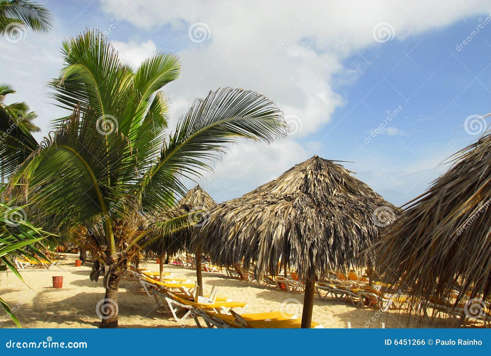 Punta cana kurort tropical