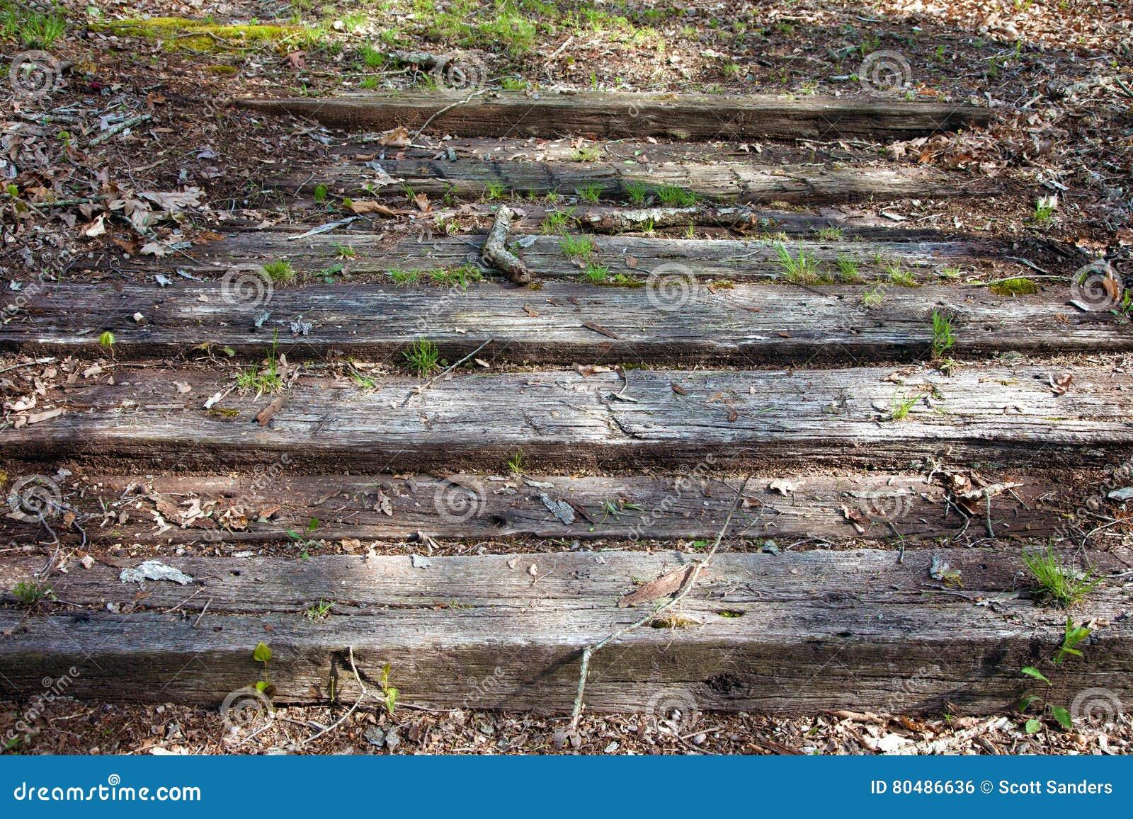 Punti di legno