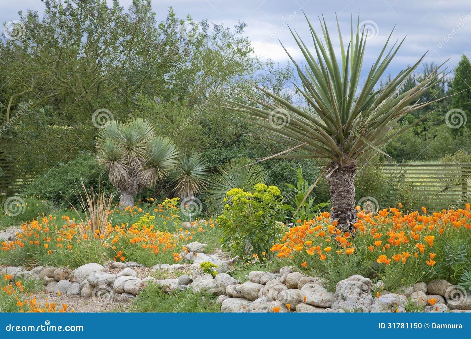 Punto tropicale in giardino fotografia stock immagine di - Giardino tropicale ...
