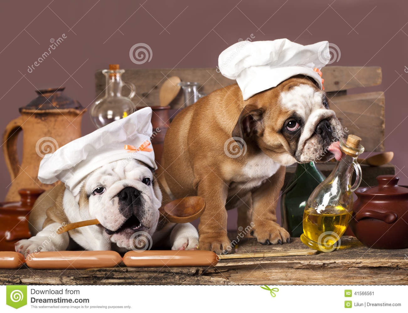Herbs And Spices Good For Dogs