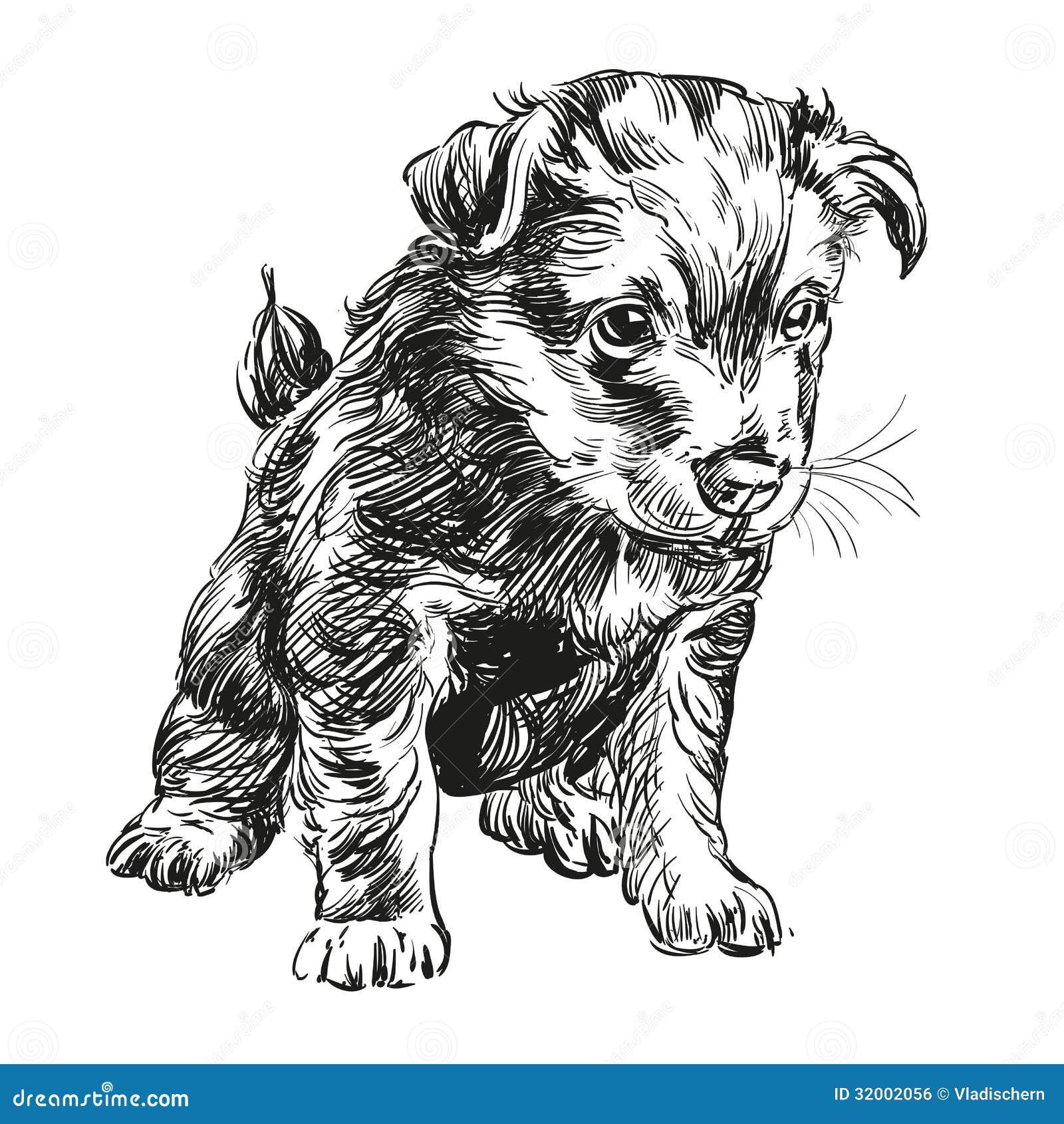 Puppy Dog Hand Drawn Vector Llustration Stock Vector