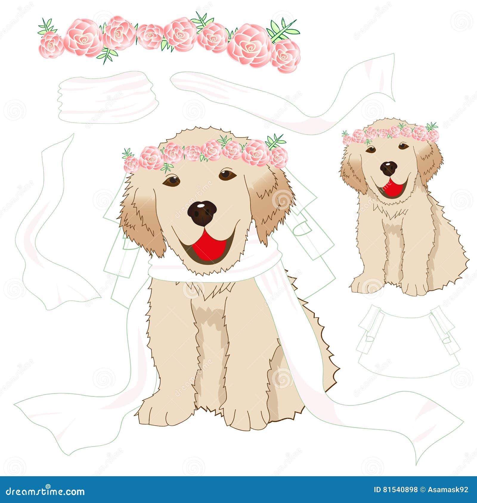 Puppy Golden Retriever Bride With Crown Pink Rose Flower White Veil
