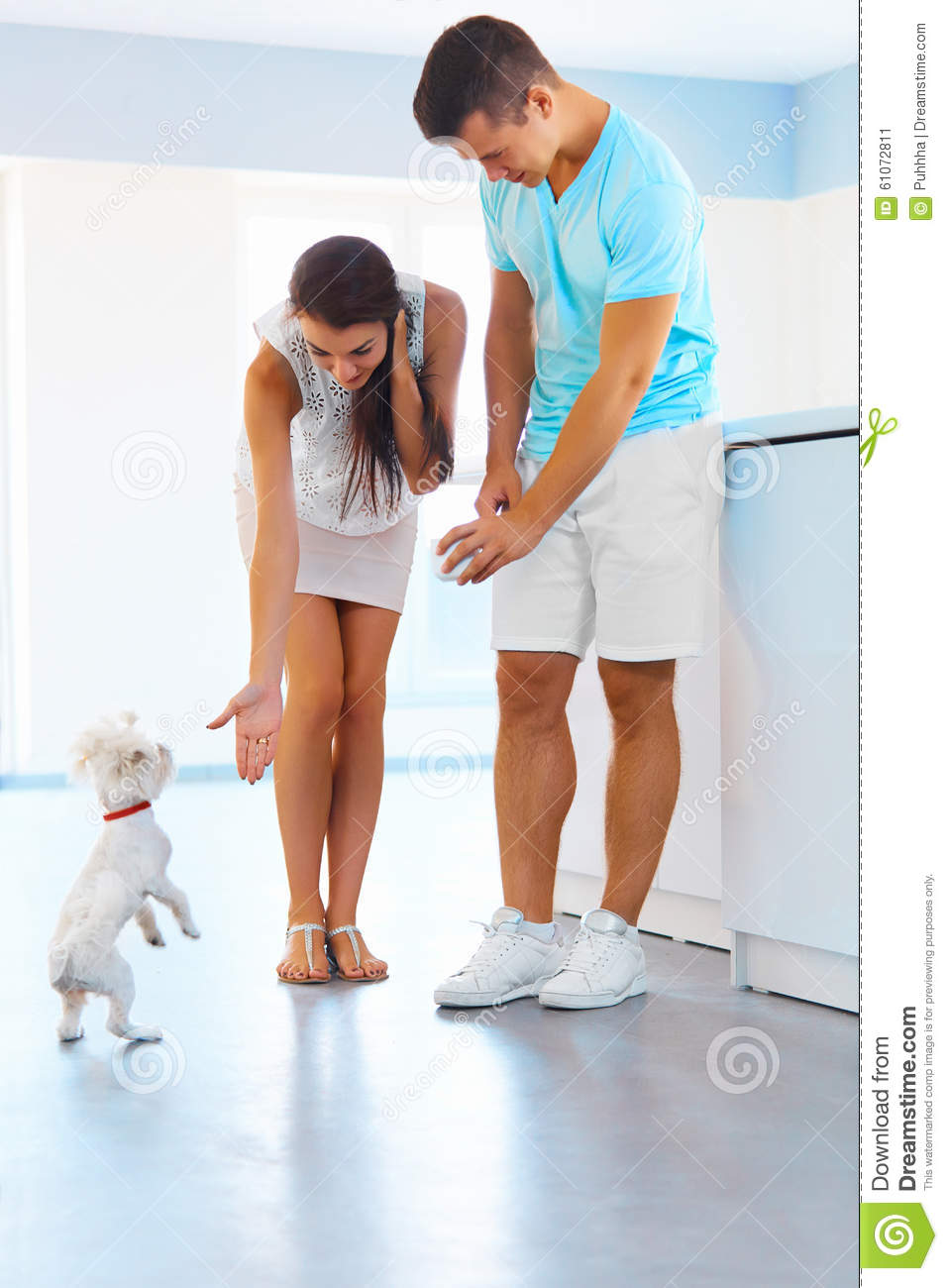 Puppy tricks. Happy couple with a dog in the kitchen.