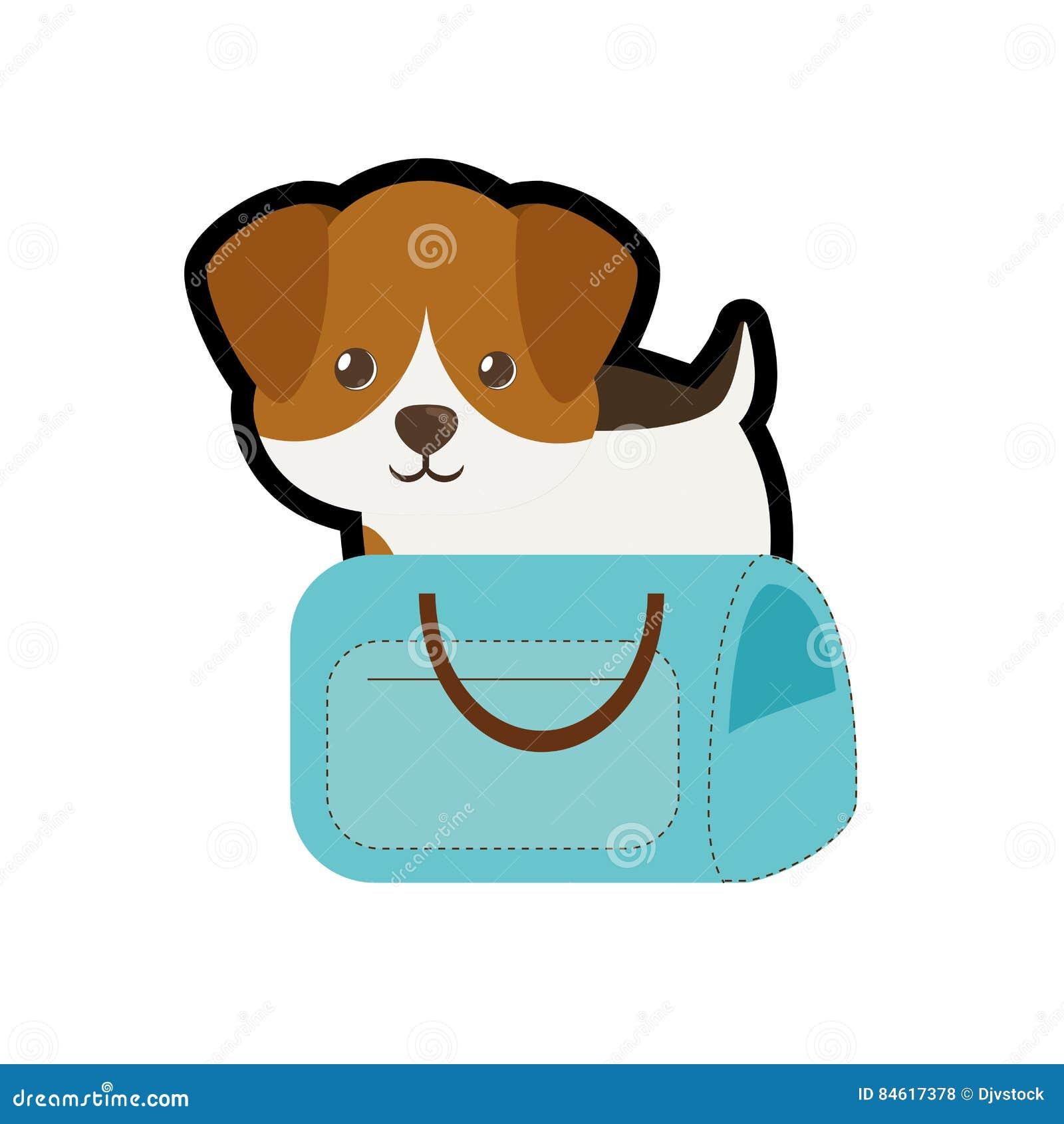 Puppy weinig de boodschappentasreis van het portret mooie blauwe huisdier