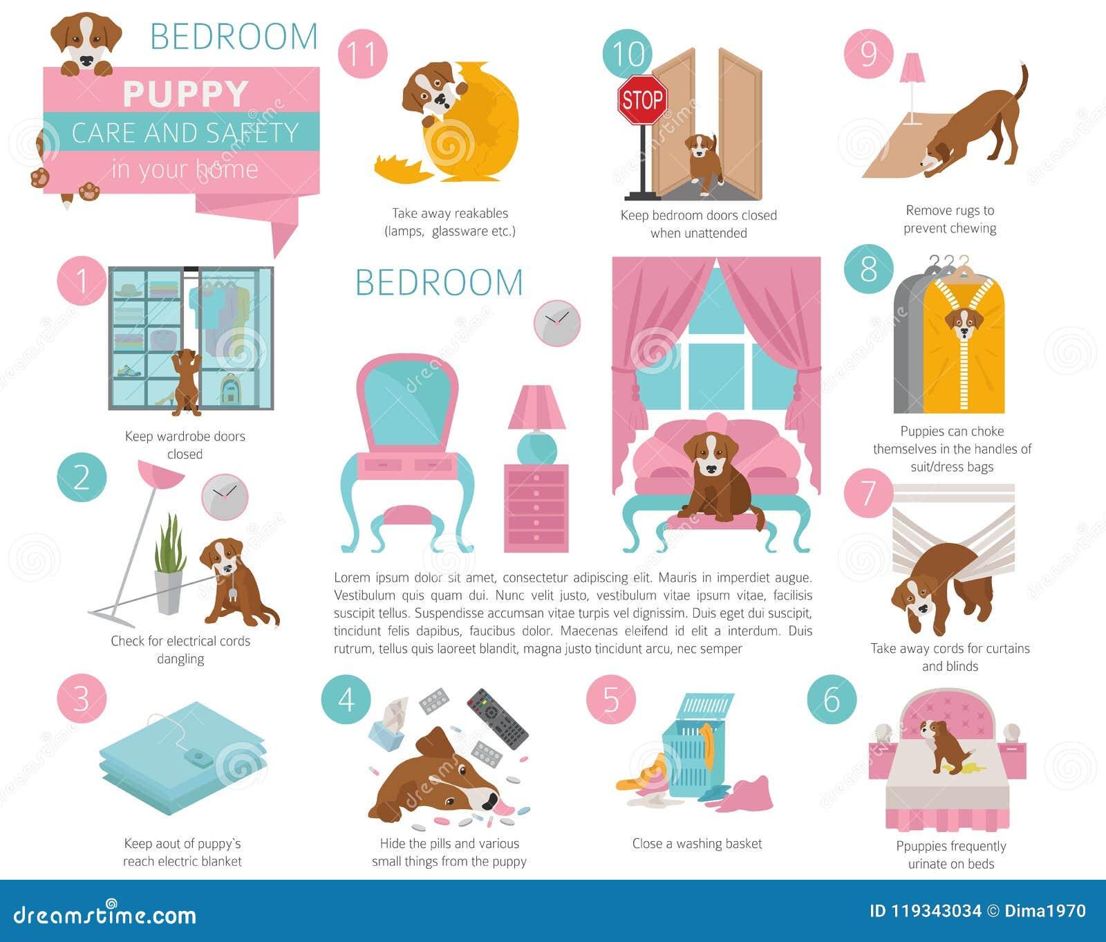 Puppyzorg en veiligheid in uw huis slaapkamer Huisdierenhond die binnen opleiden