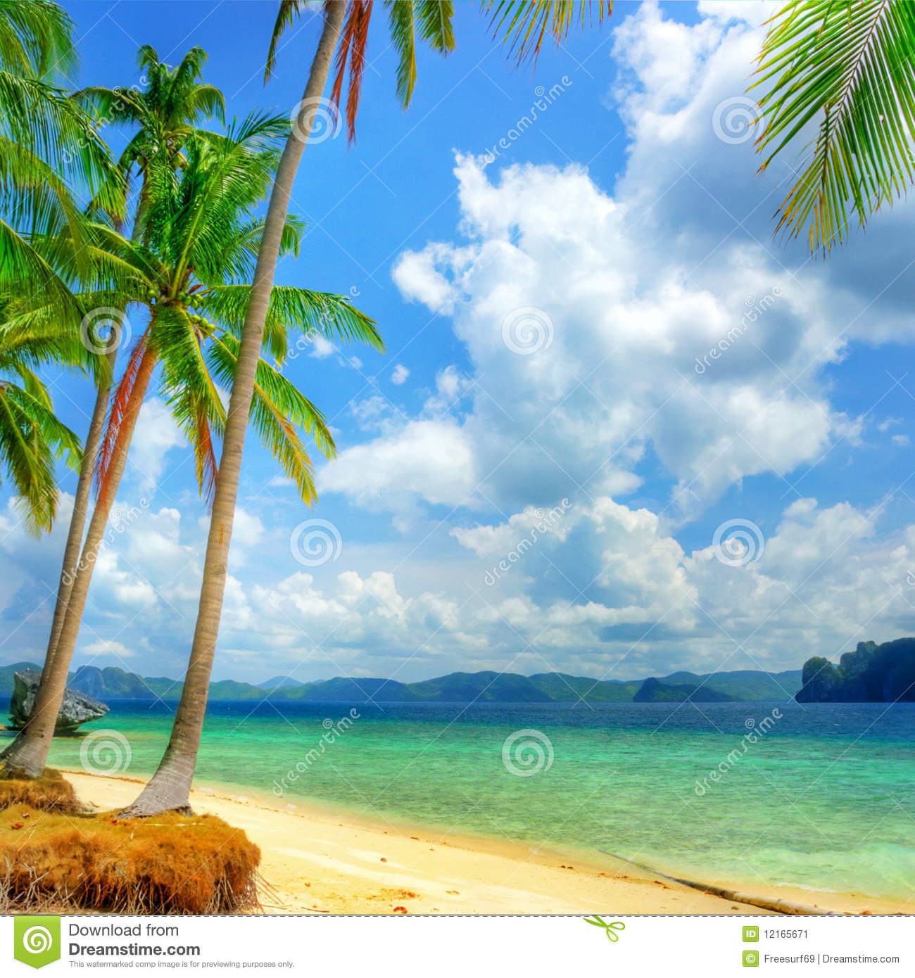 Tropical Beach And Peaceful Ocean: Pure Tropics Stock Image