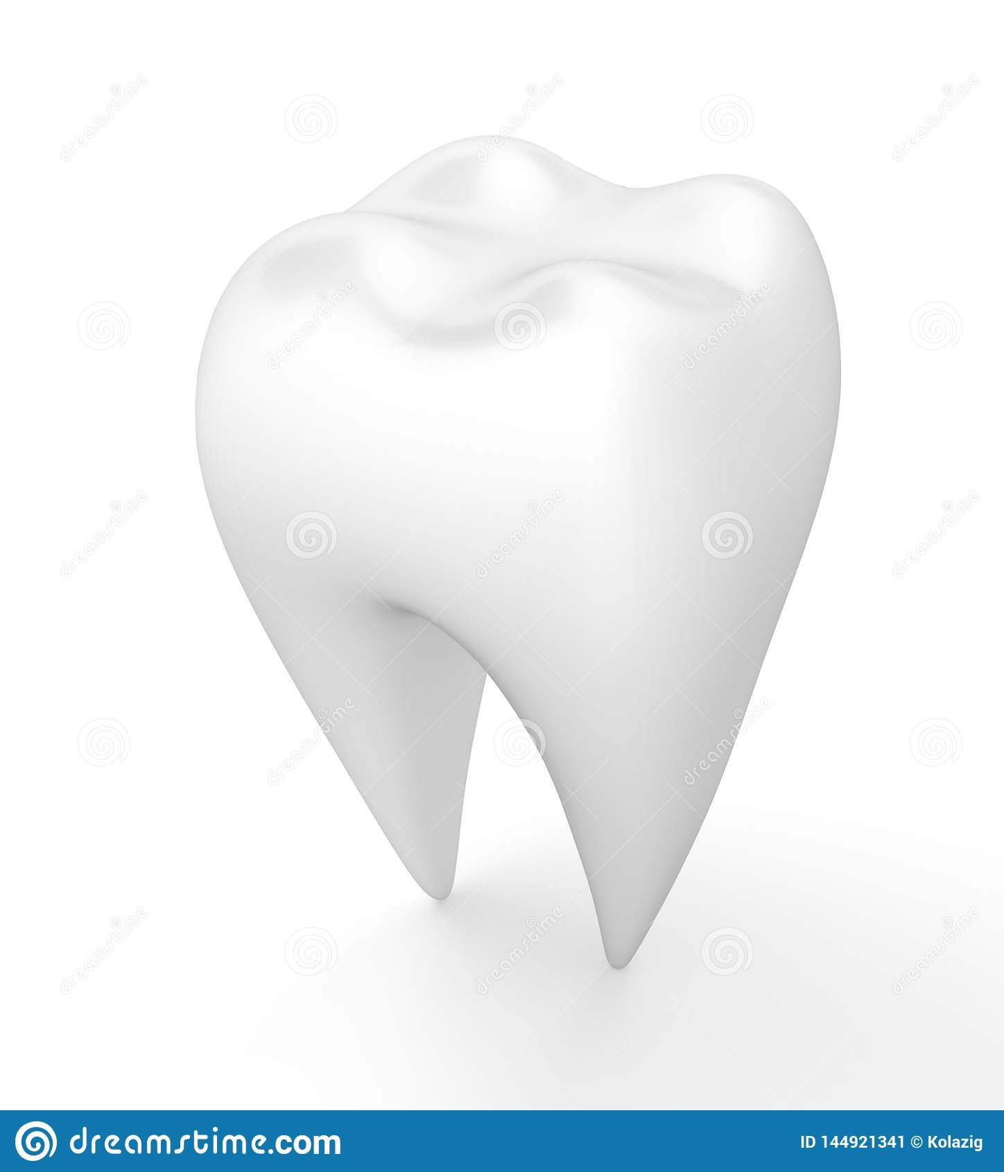 Clean human tooth