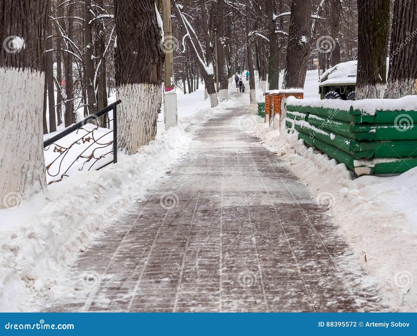 Purified od śnieżnej ścieżki w parku