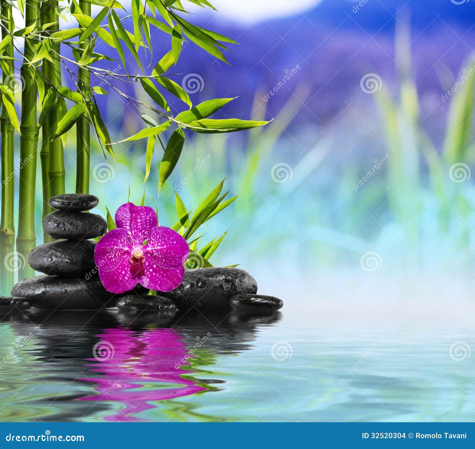 Purper Orchidee, Stenen en Bamboe op het water