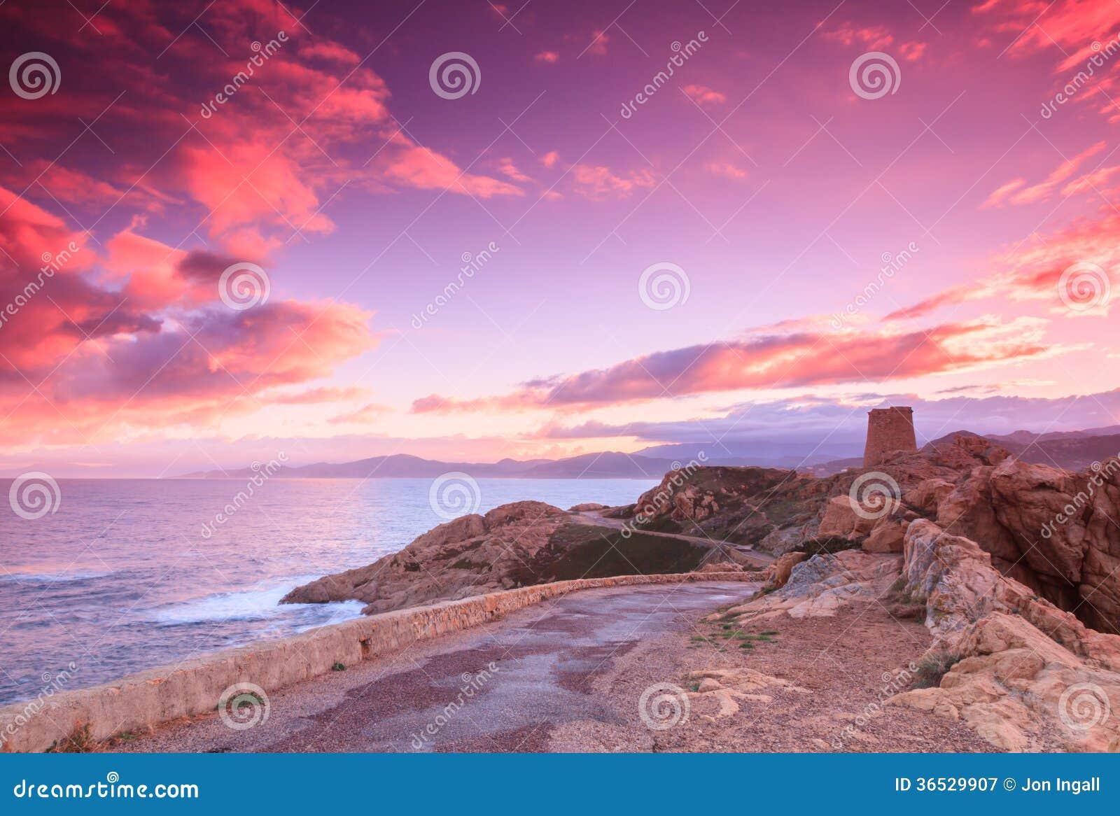 Purpere dageraad, Ile Rousse, Corsica
