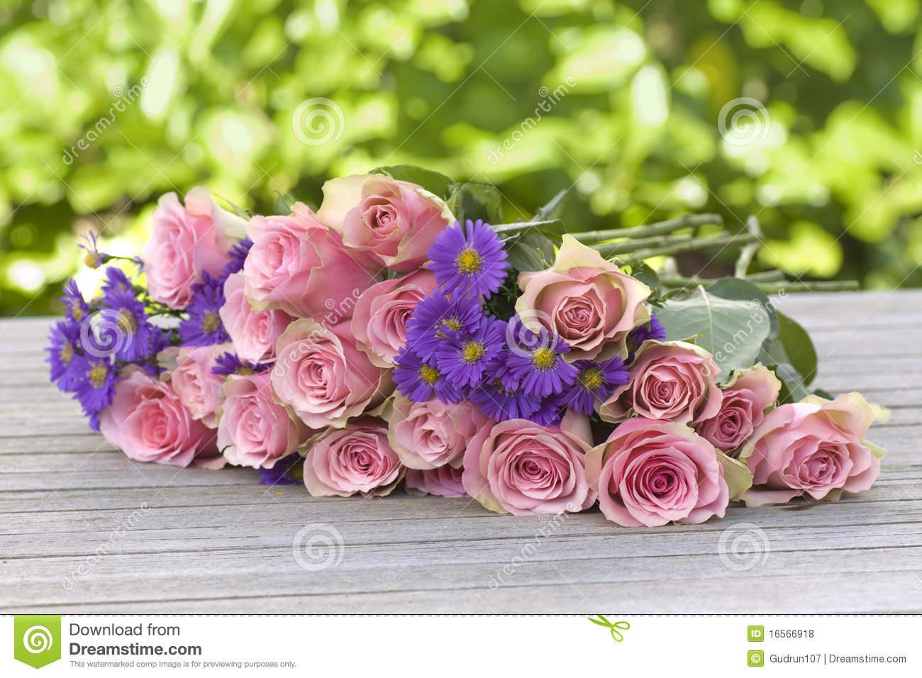 Download Purple Aster And Pink Roses Stock Photo - Image of horizontal, large: 16566918