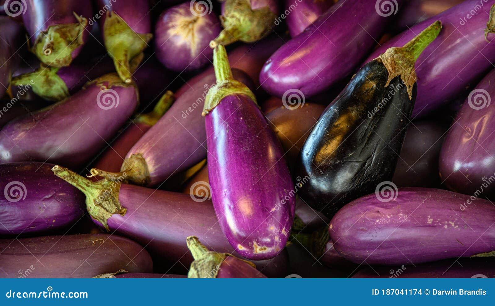 penis violet)