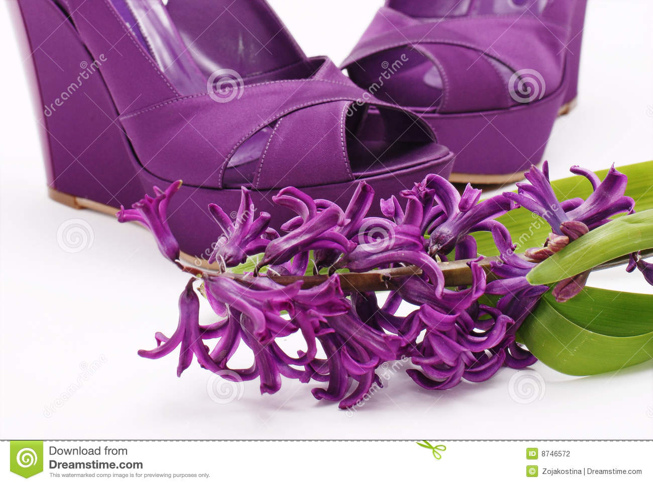 Purple Fashion Shoes And Flower Stock Photography Image