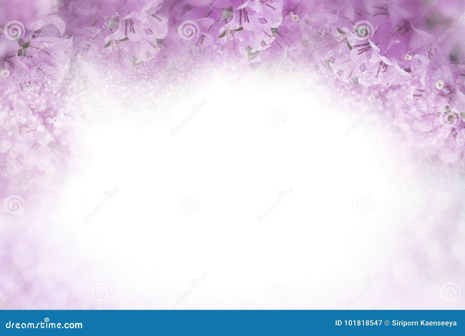 Purple Flower Bougainvillea Frame On Soft Pink Background Valentine
