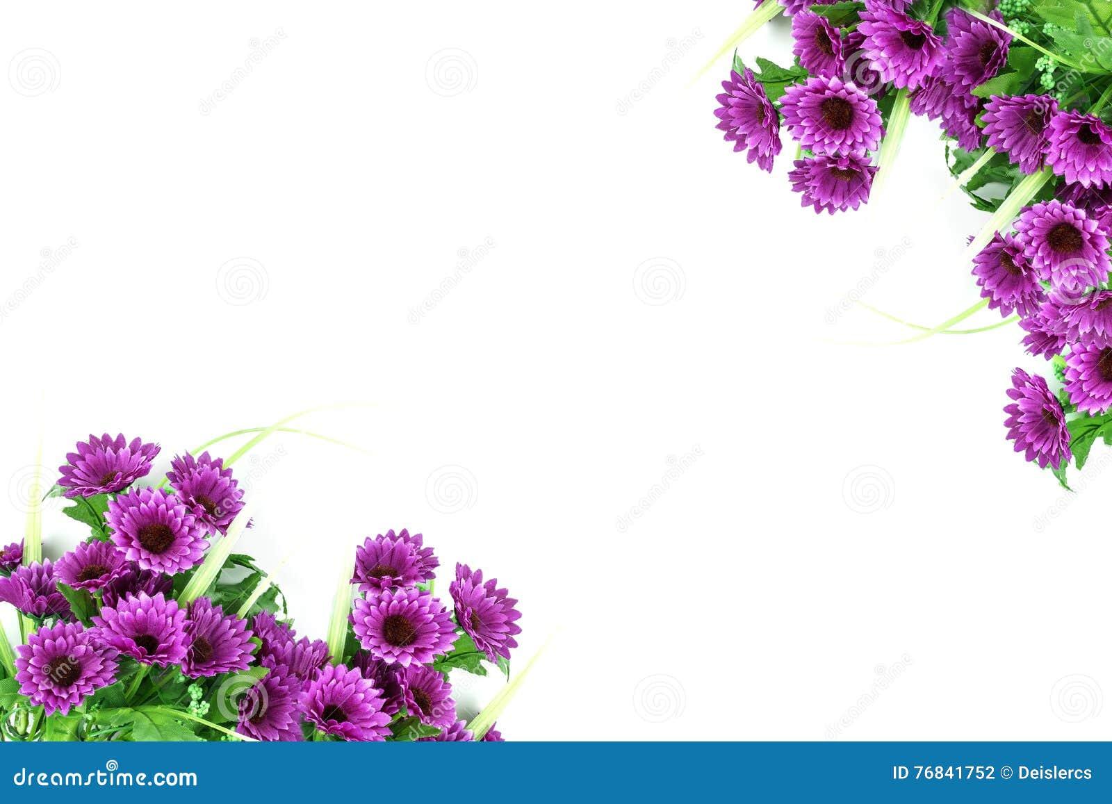 Purple Flower Wallpaper Border Corner Background On Whi Stock