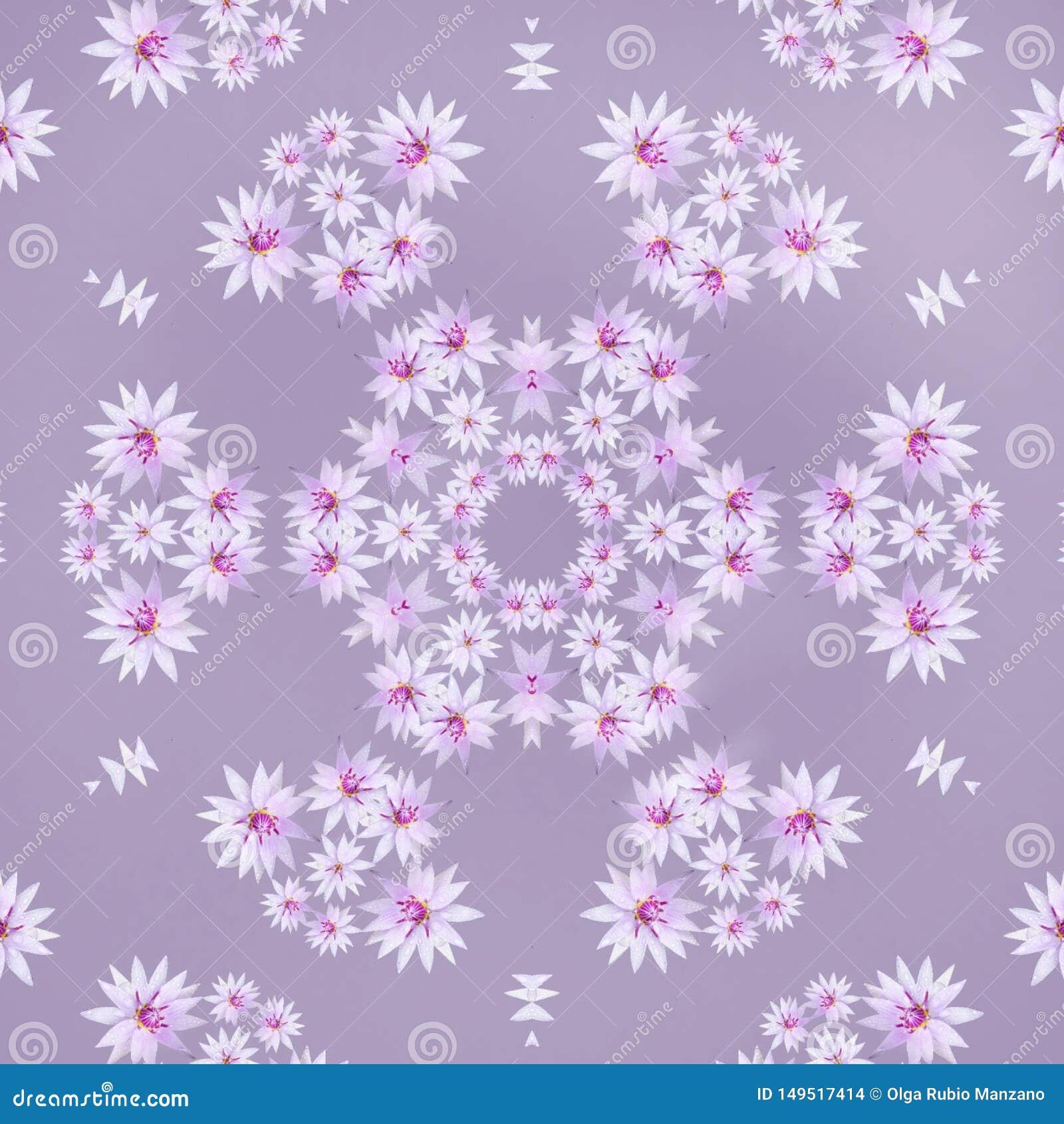 Purple Flowers In Mandala Stock Illustration Illustration Of