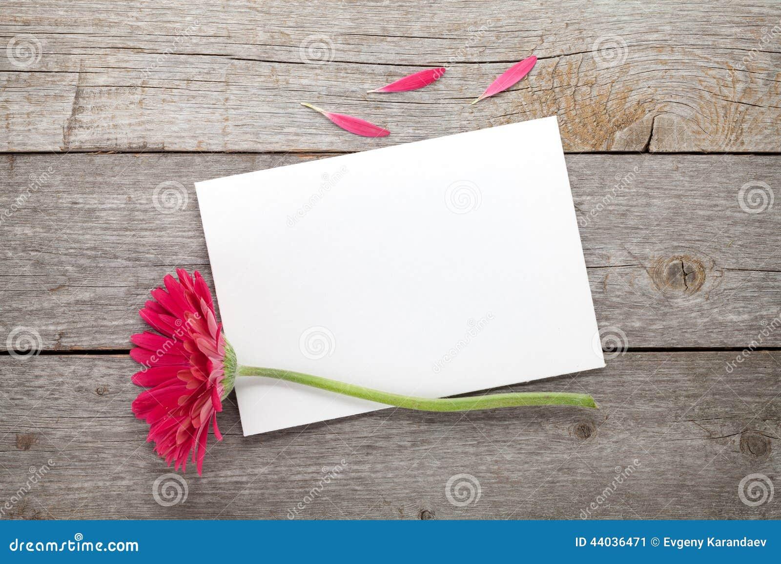 Purple gerbera flower and blank greeting card stock image image of purple gerbera flower and blank greeting card m4hsunfo