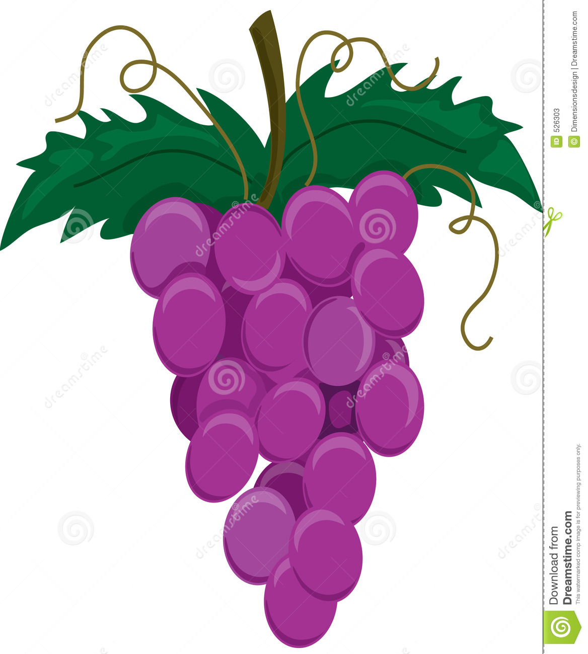 Purple Grapes On A Vine Stock Photos - Image: 526303