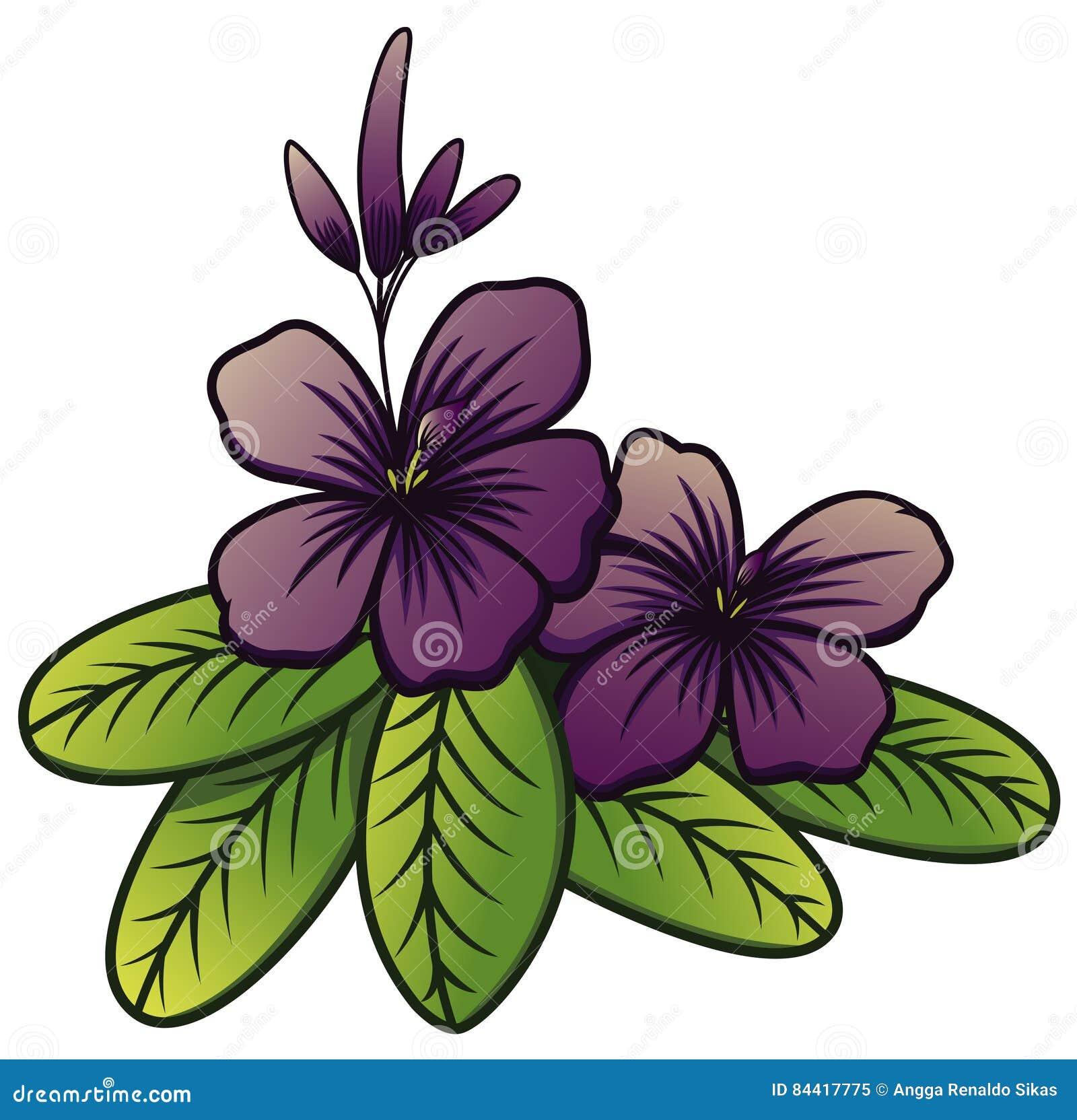 Purple jasmine flower illustration 84417775 megapixl purple jasmine flower izmirmasajfo