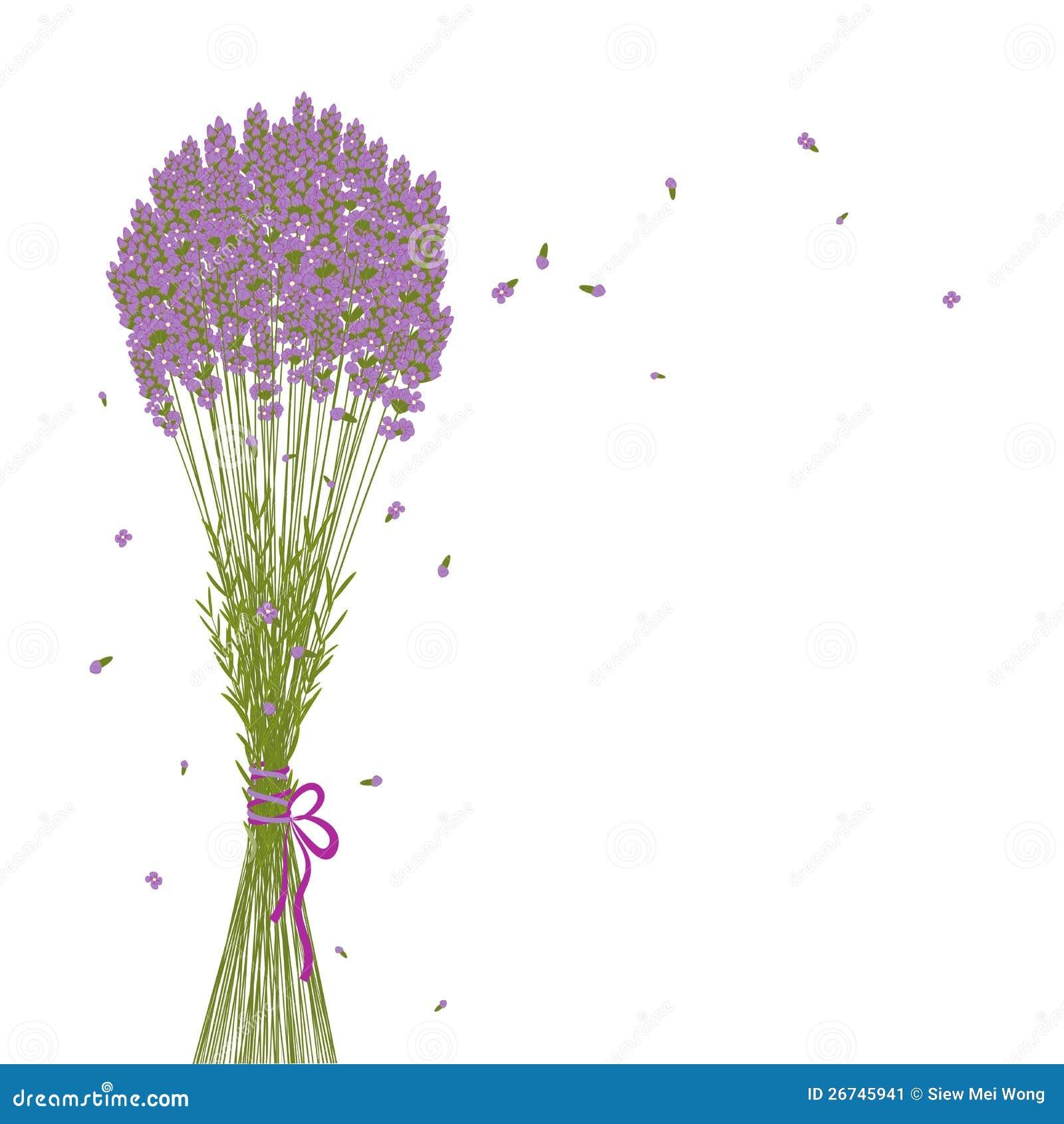 Purple Flower Clipart No Background: Purple Lavender Flower Background Stock Image