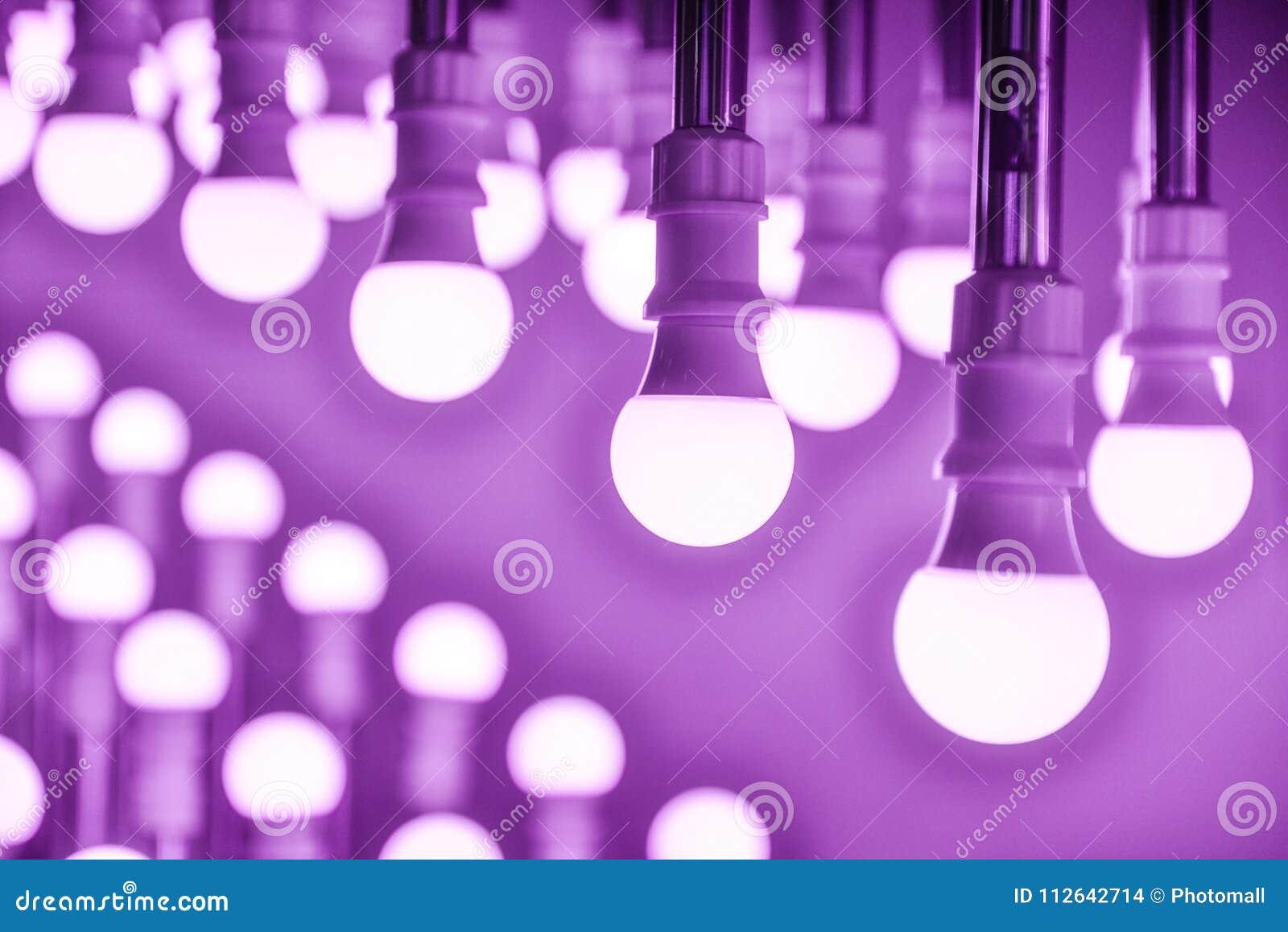 Purple led Lamp bulbs