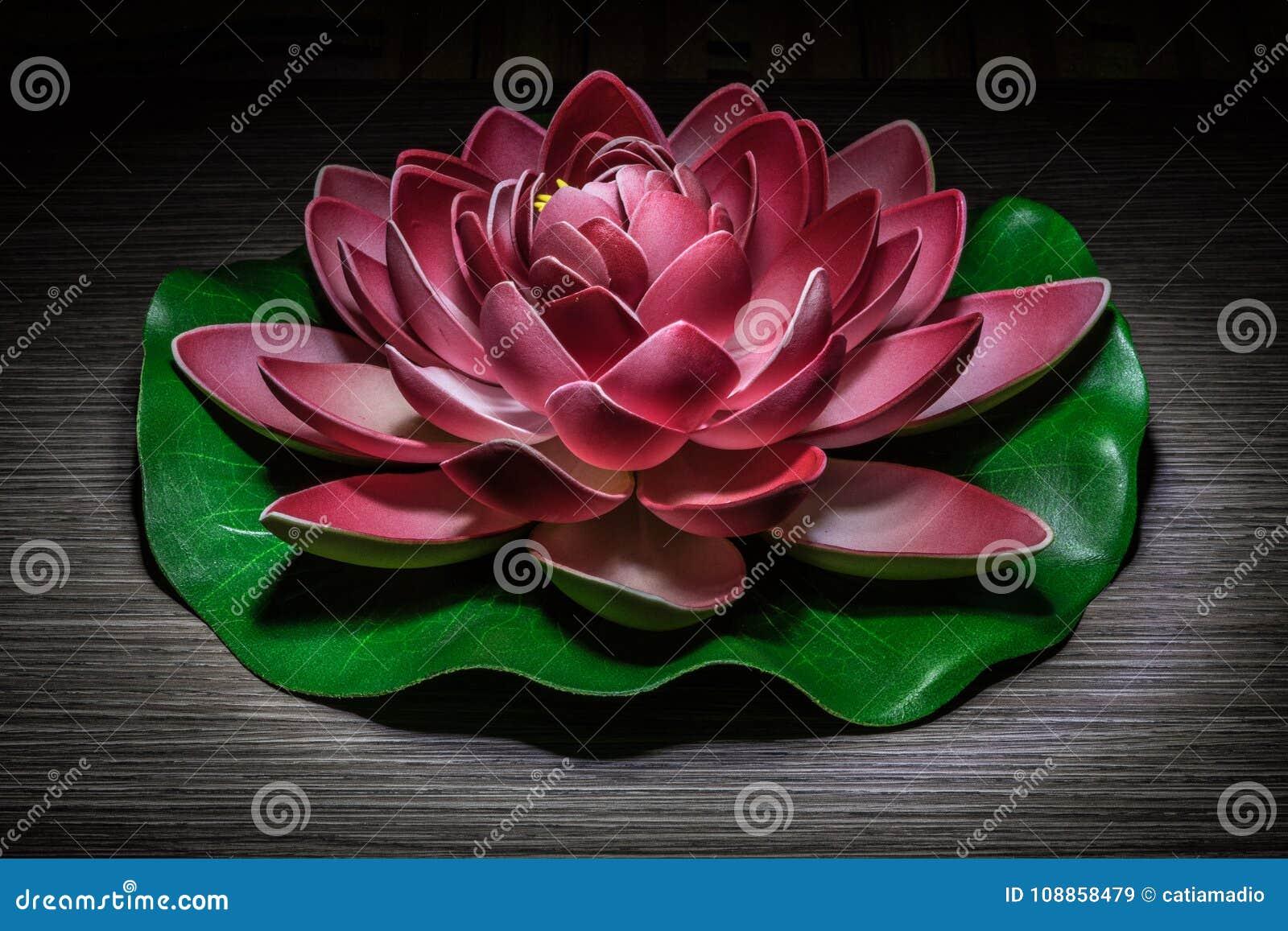Ornamental lotus light painting stock image image of water ornamental lotus light painting izmirmasajfo