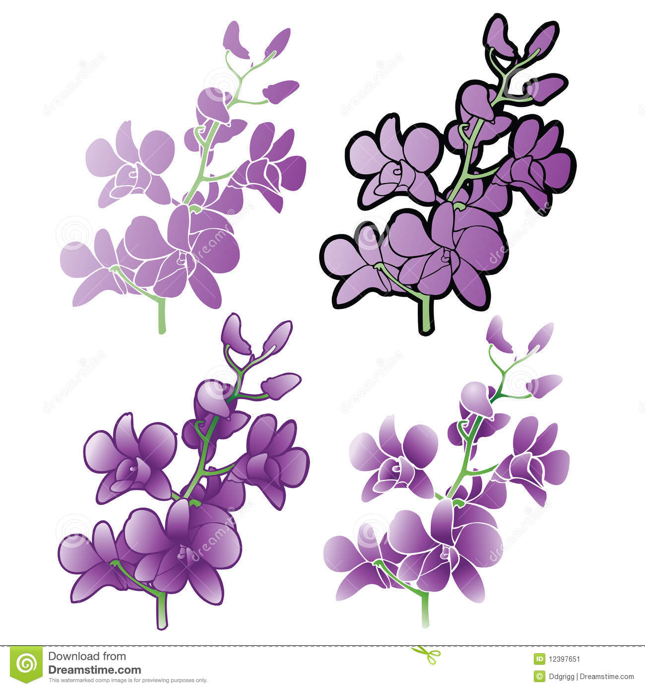 Purple Orchids, Different Versions Stock Image - Image ...
