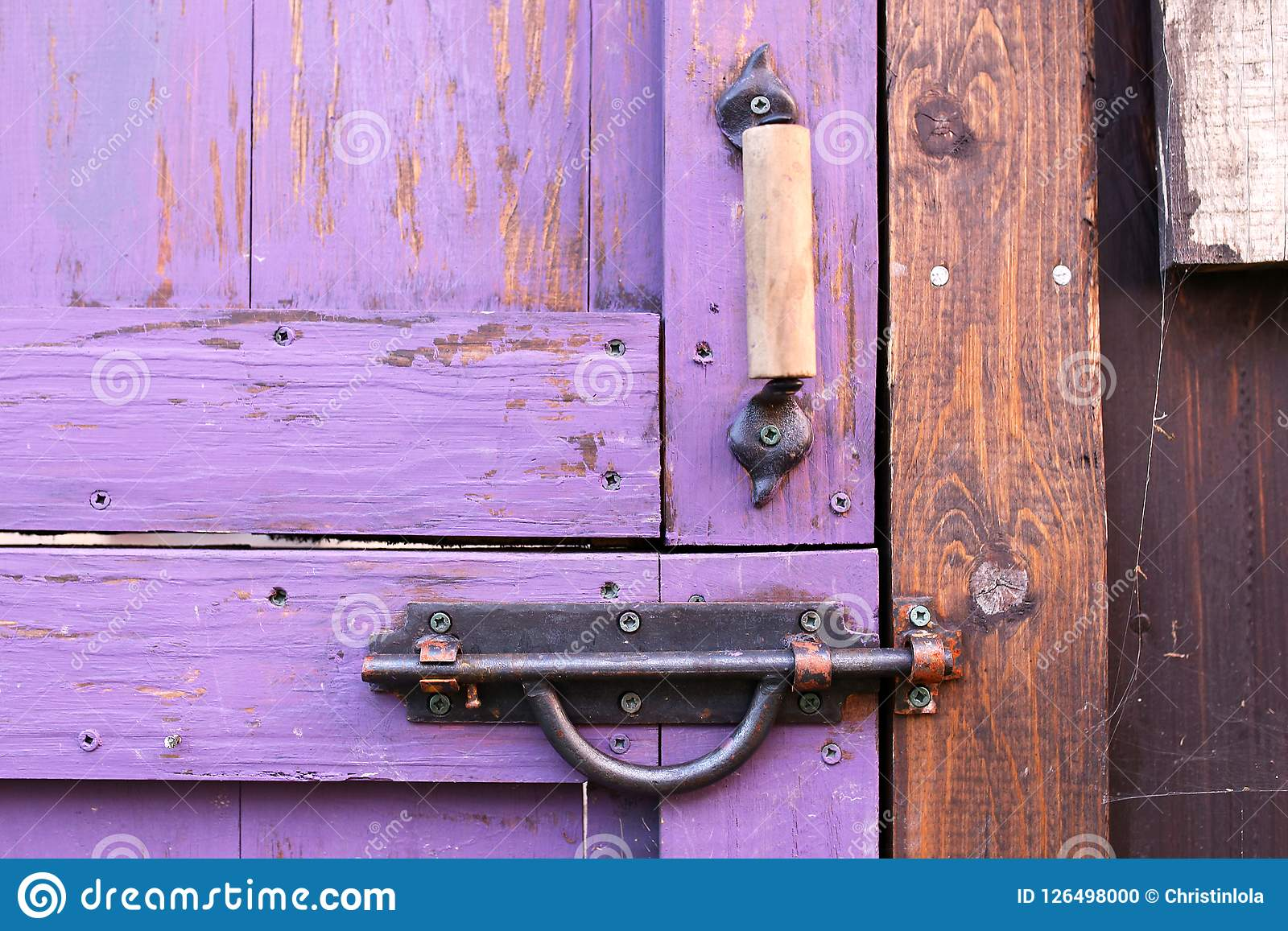 Close Up On The Wooden Handle And Iron Gate Lock On An Old Purple Painted  Spilt Dutch Garden Shed Door.