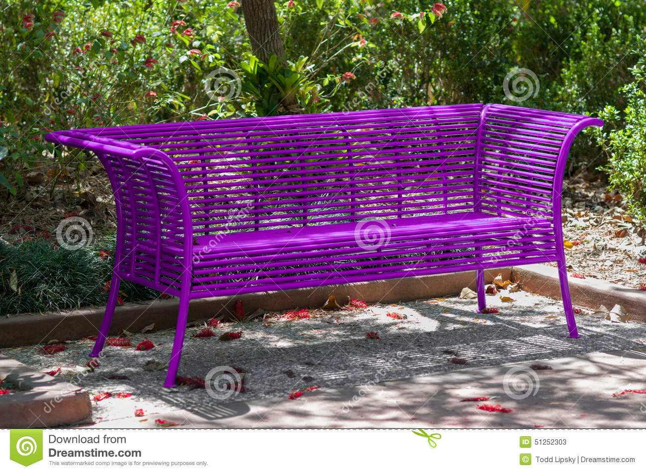 Purple Park Bench Stock Image Image Of Outdoor Empty