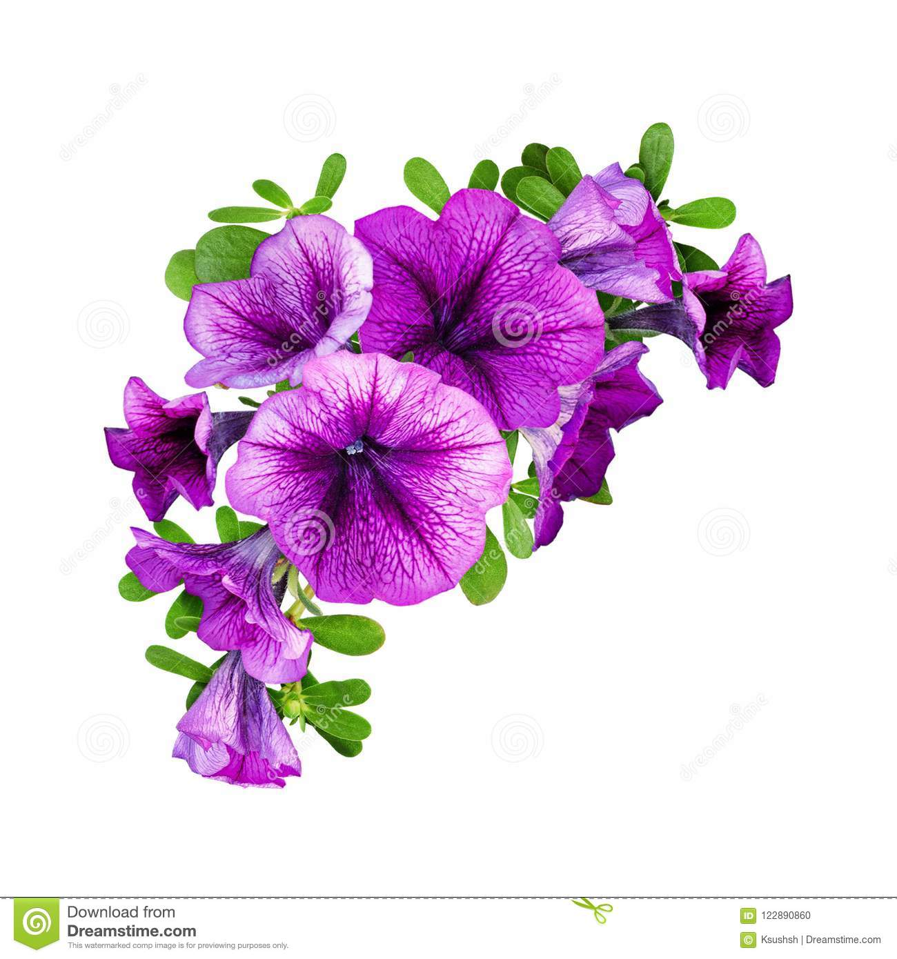 Purple petunia flowers in a floral corner composition