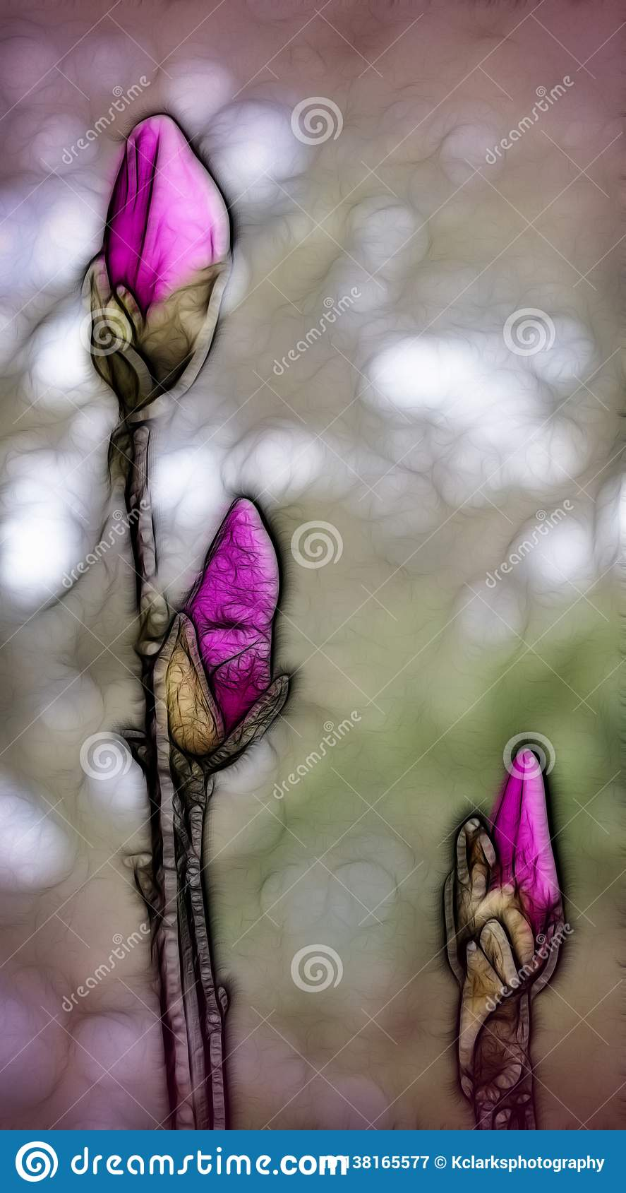 Purple Pink Saucer Magnolia Buds Digitally Painted Batik Stock