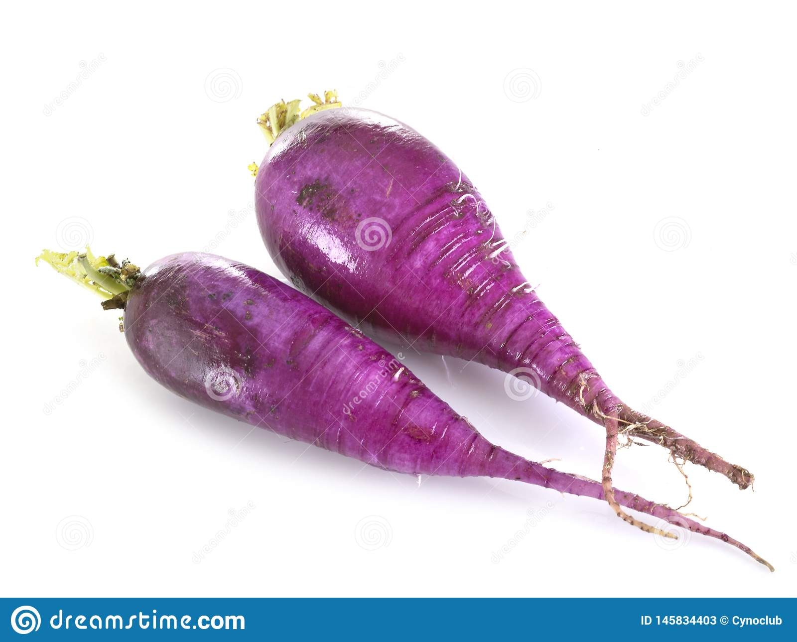 Purple radish in studio
