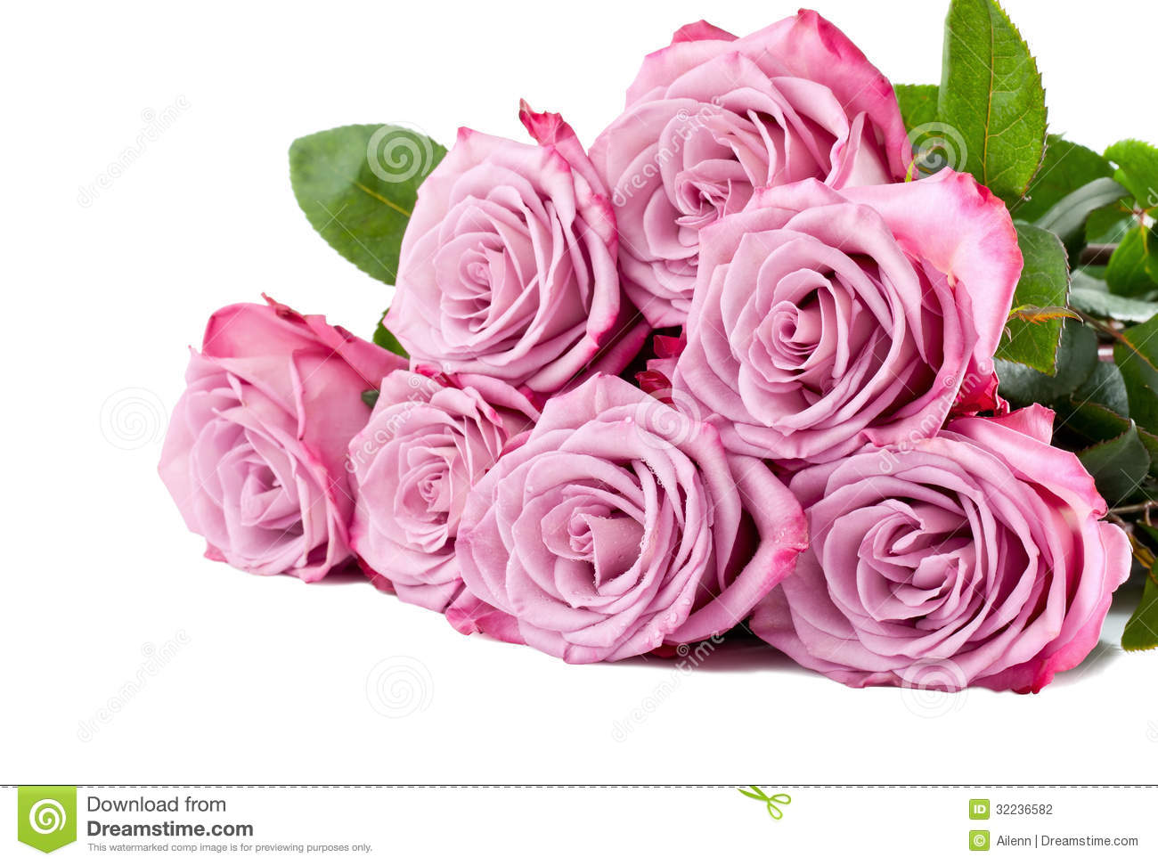 Wedding Roses Lavender Background Stock Photos, Images, & Pictures ...