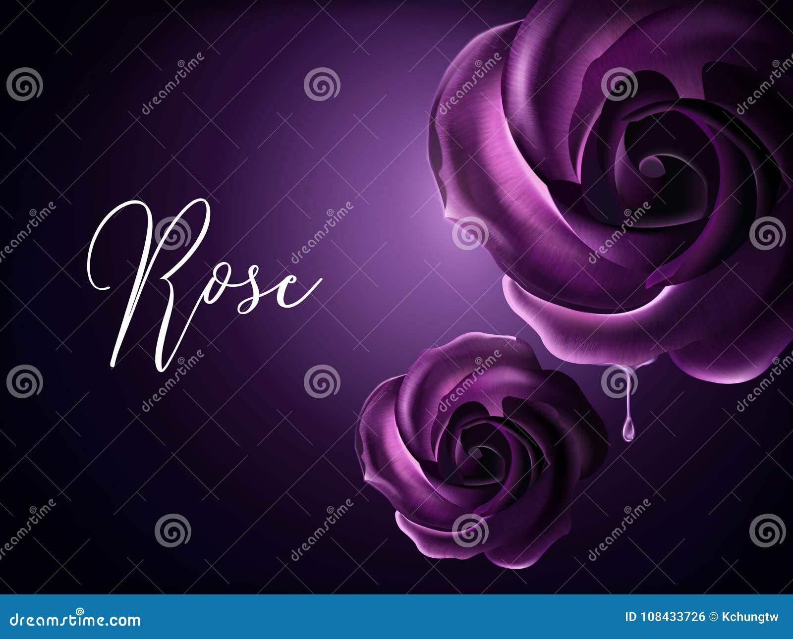 Purple roses elements