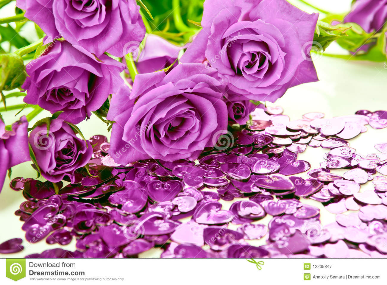 Purple Roses And Hearts Stock Image. Image Of Love, Heart