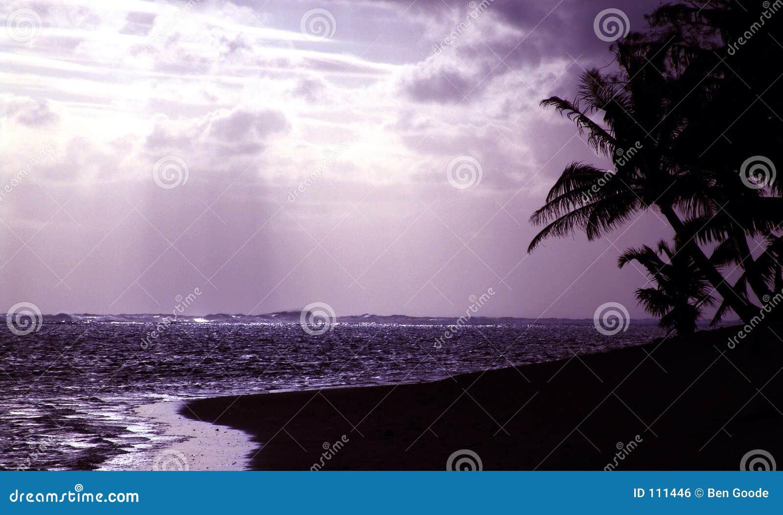 Purple Silhouette Sunset