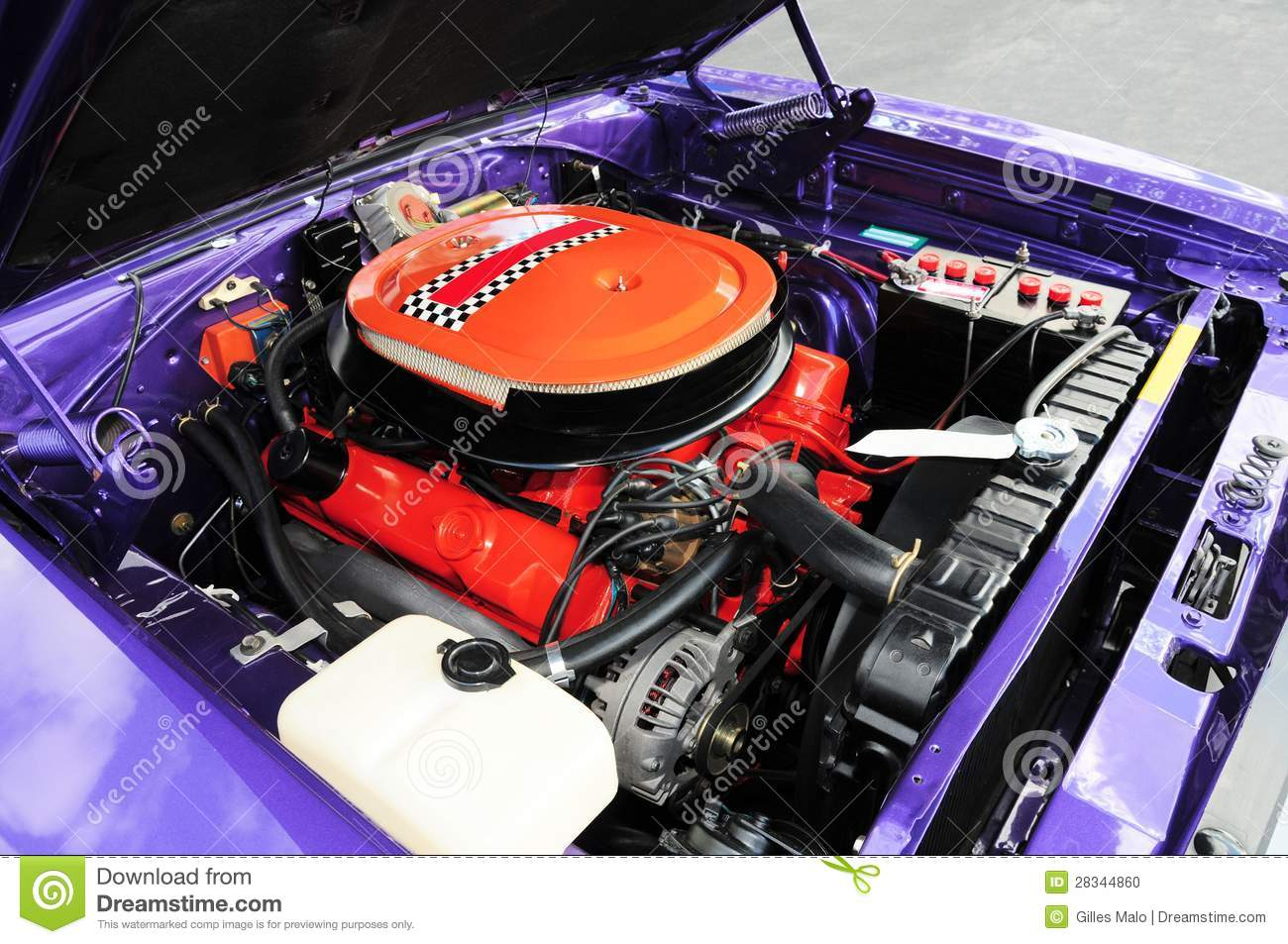 Purple sports car viewing gallery