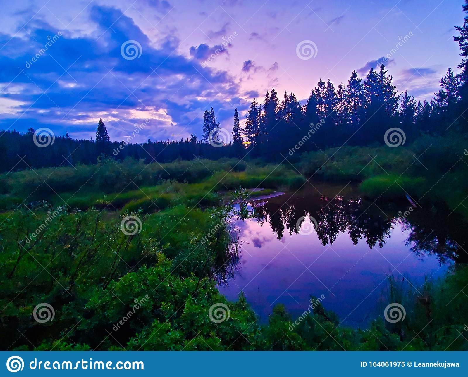 A Purple Sunset Over A Pond Stock Image Image Of Nature Sunset 164061975
