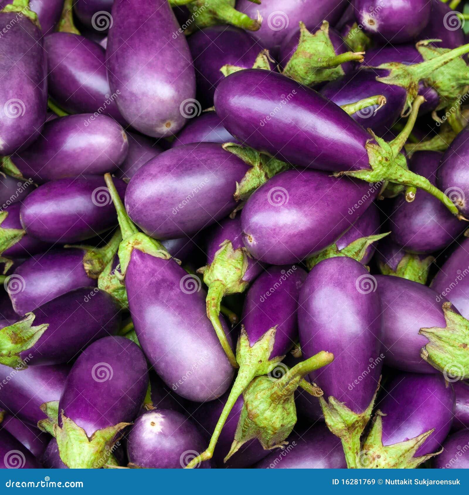 Purple van de aubergine