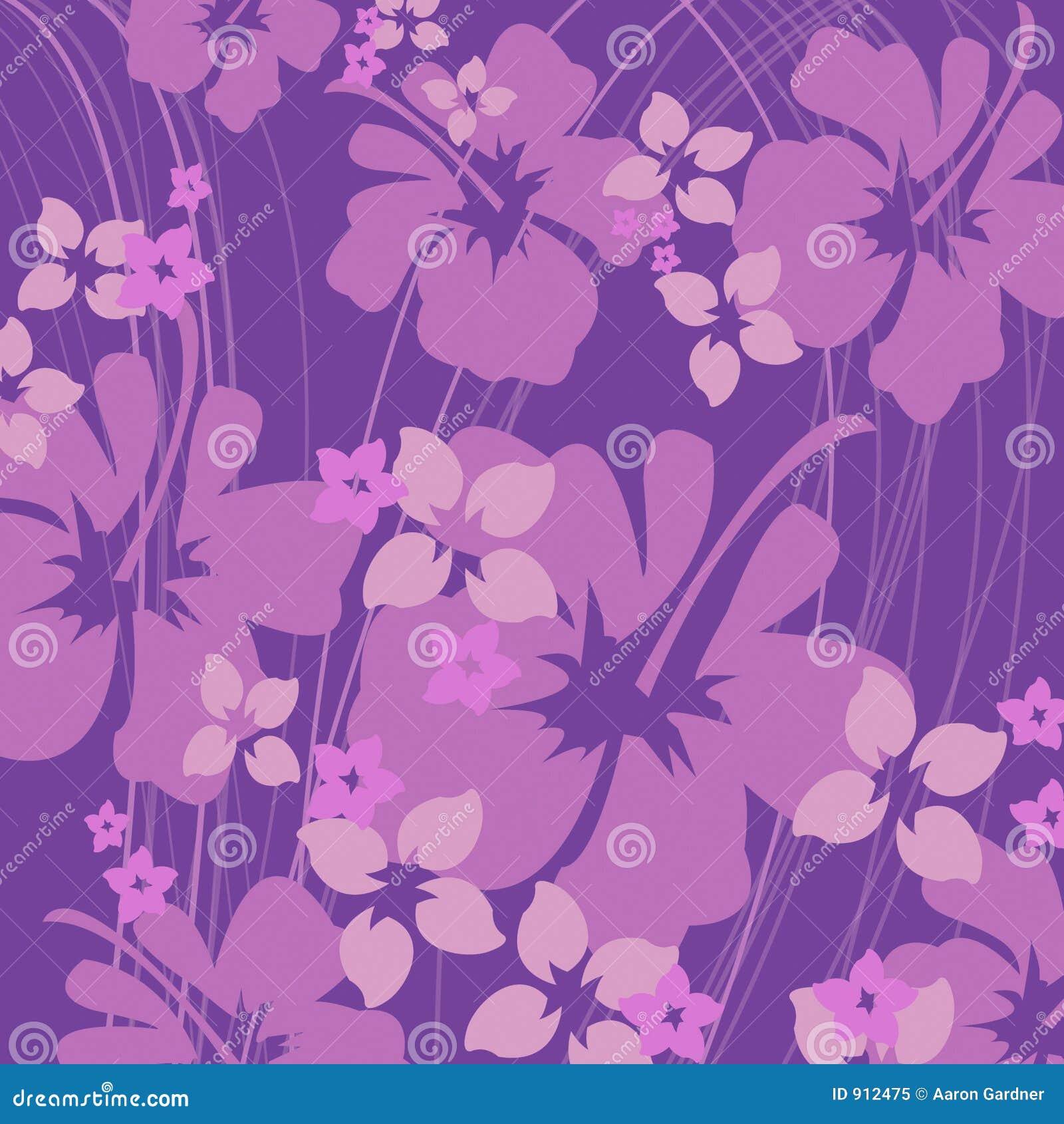 Purple van de hibiscus