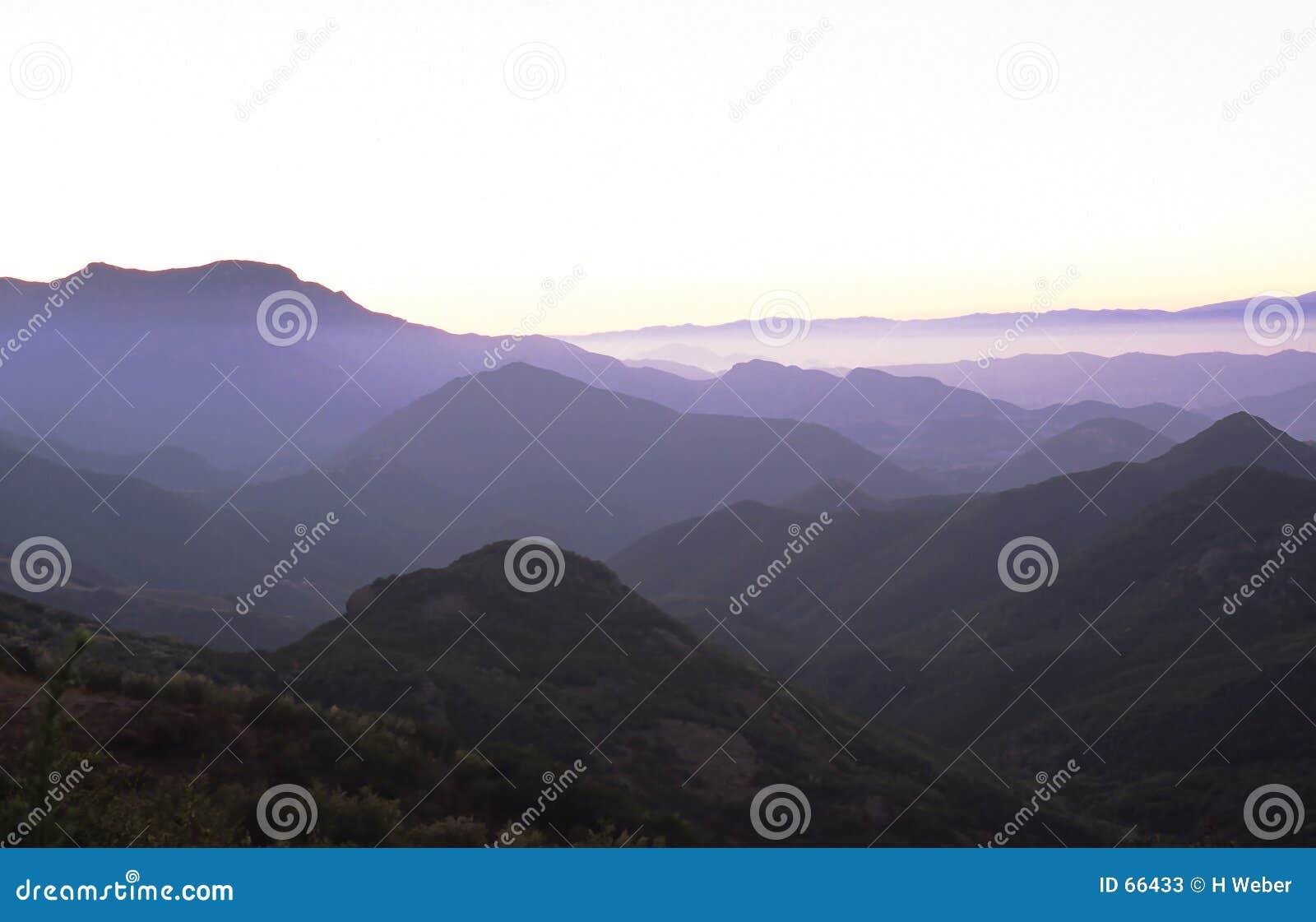 Purpura berg