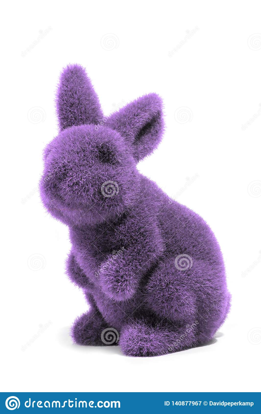 Purpurfärgad easter kanin