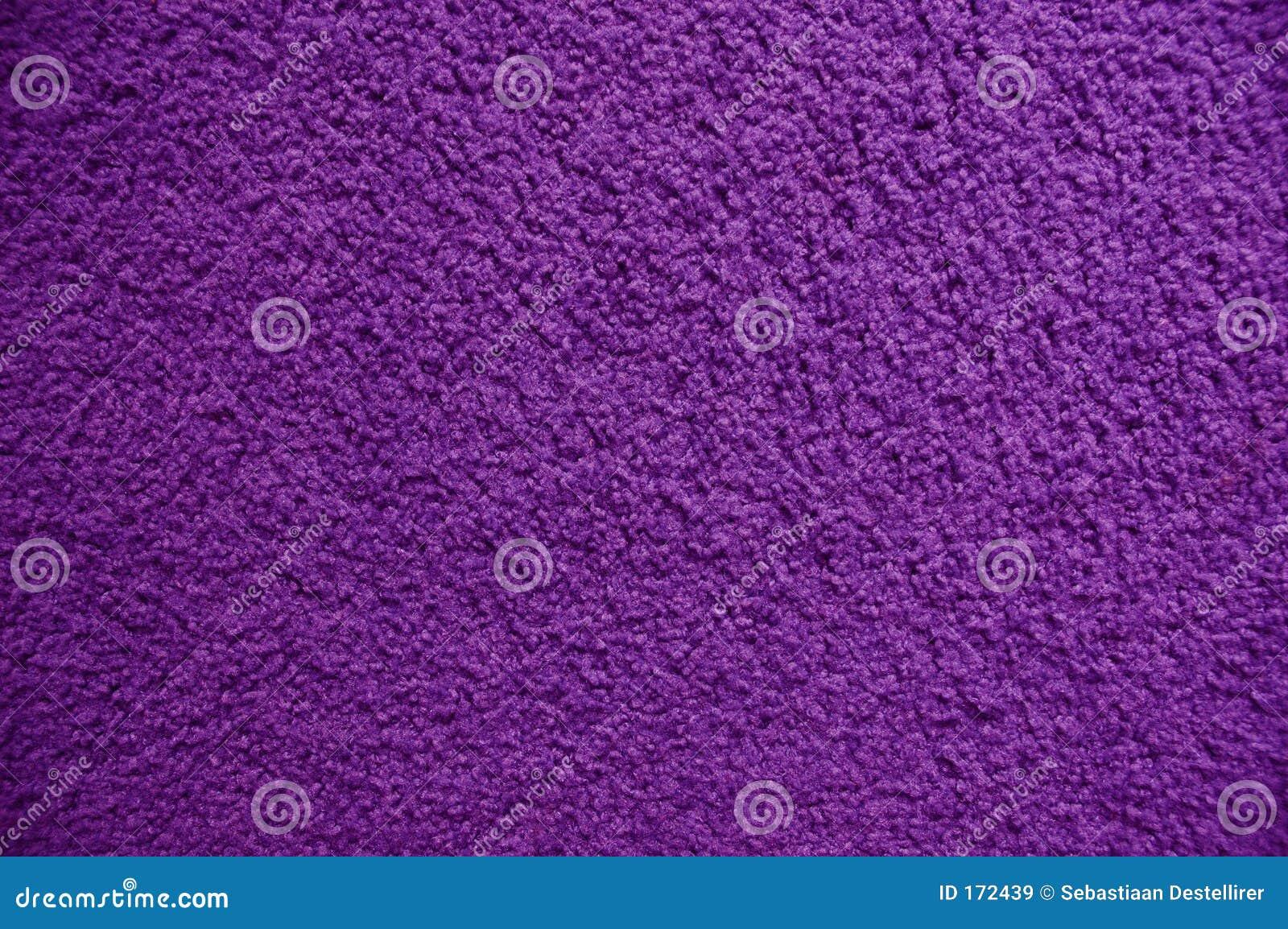 Purpurowy dywanowe