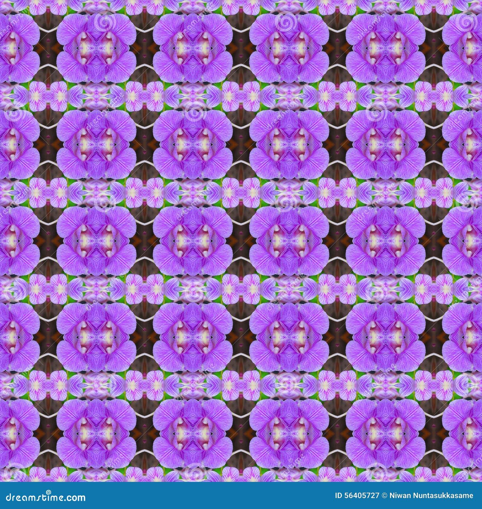 Purpurrote Orchideen, ein Blumenstrauß von Blumen sind in voller Blüte nahtlos