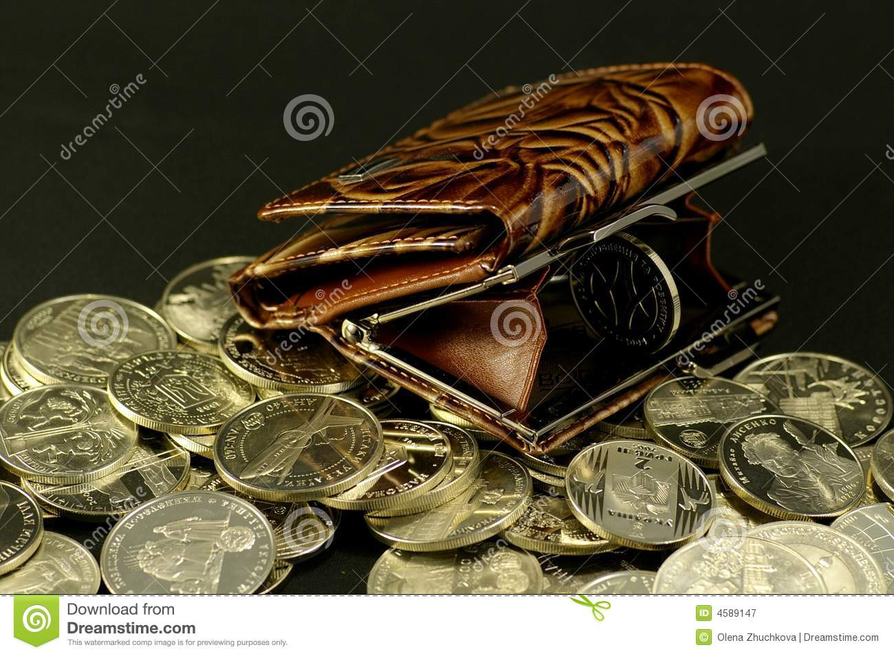 Purse and the coin