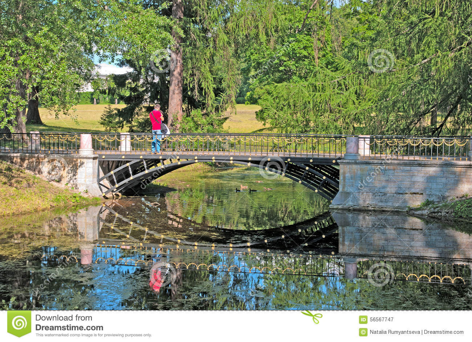 Download Pushkin Selo Tsarskoye θόλος Isaac Πετρούπολη Ρωσία S Άγιος ST καθεδρικών ναών πάρκο της Catherine γεφυρών Εκδοτική Φωτογραφία - εικόνα από ευρώπη, έξω: 56567747