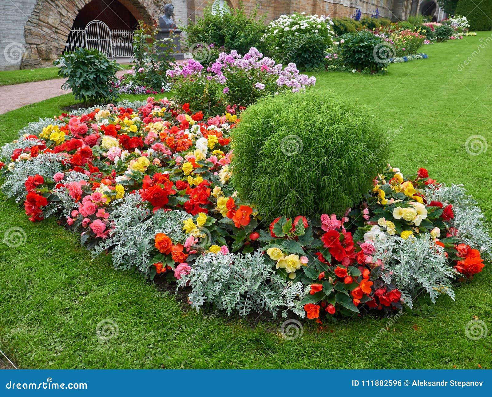 Beautiful Flower Beds In Tsarskoye Selo St Petersburg Russia