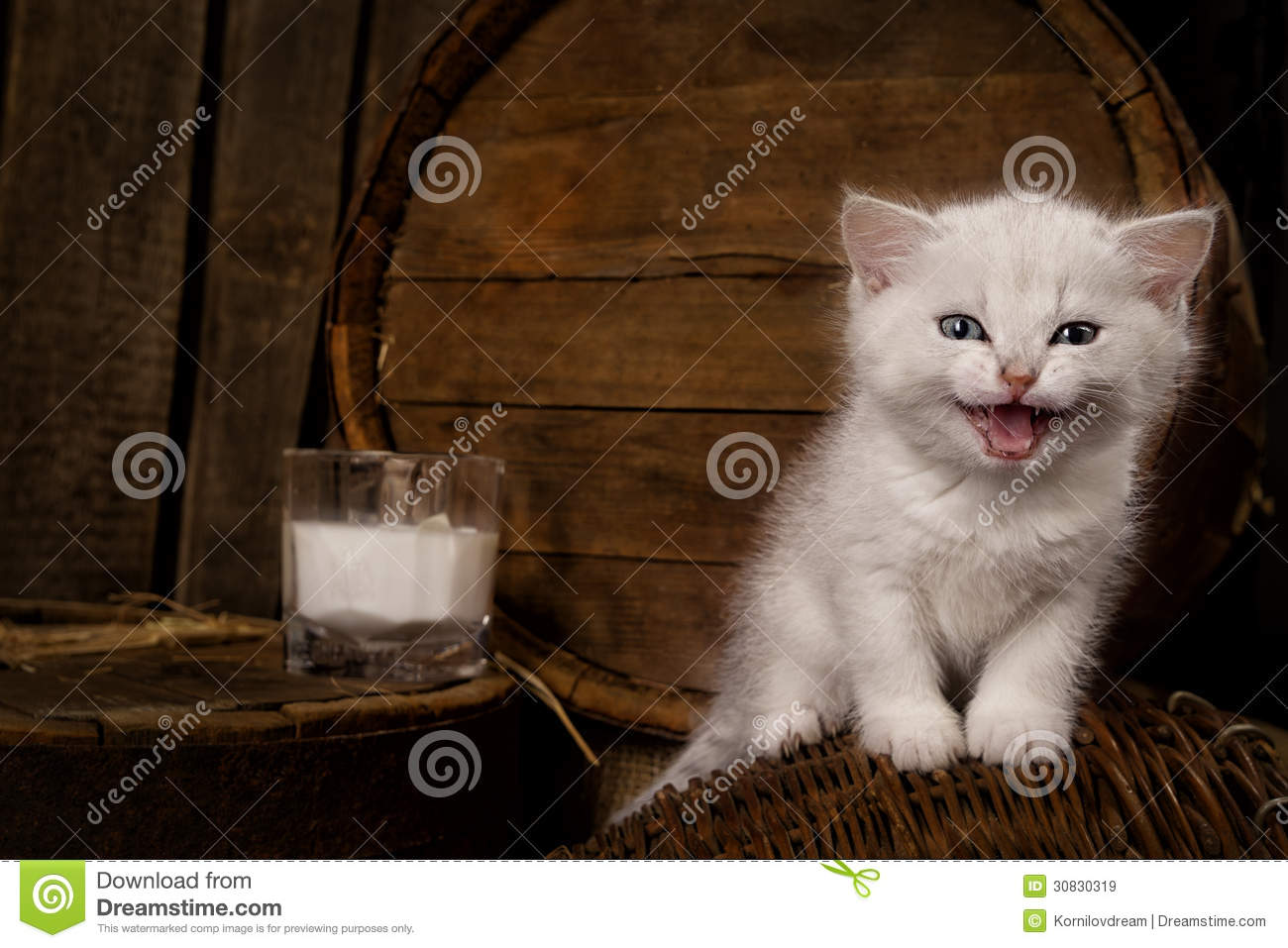 Cat With Milk Royalty Free Stock Images Image 30830319